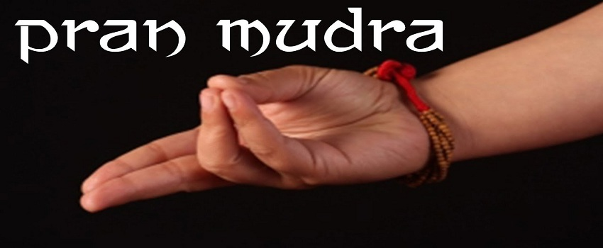 Pran Mudra
