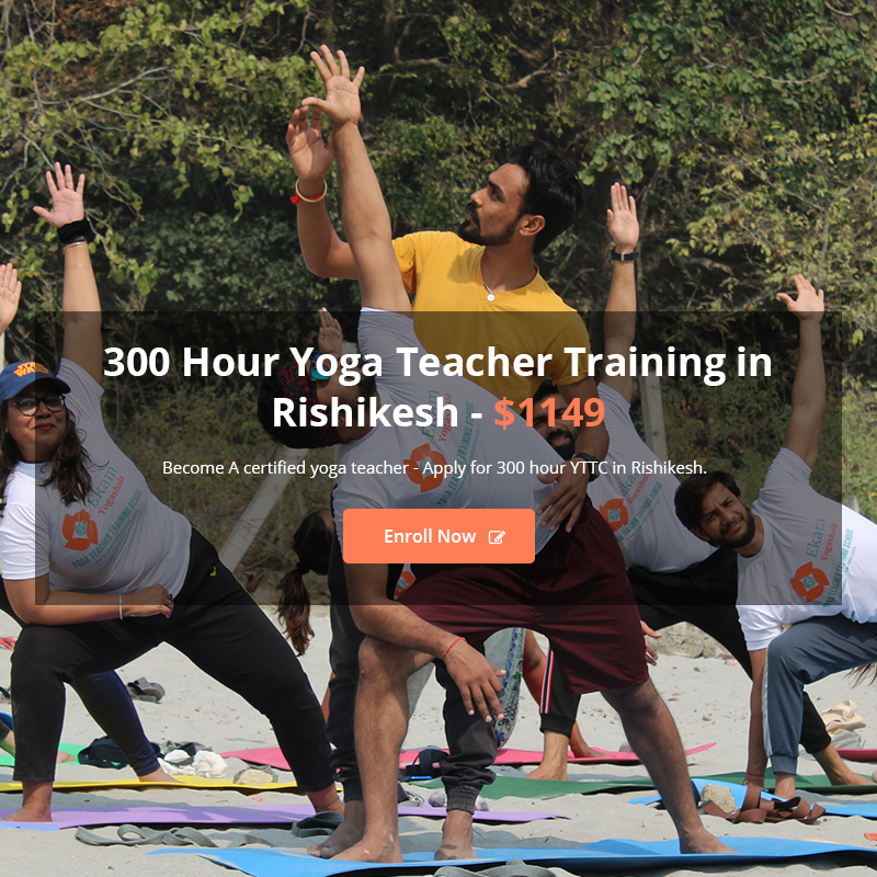 Yoga Teacher Training India 2020 2021 Yoga School In India